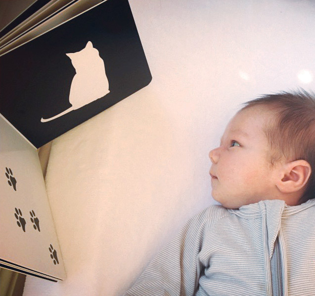 Baby looking at mesmerised book