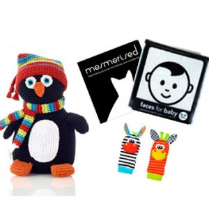 penguin toy and black white book gift pack